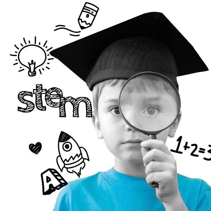inteligencias multiples disciplinas stem Genios STEM